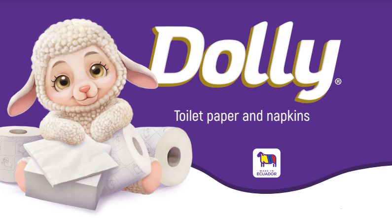 38673 - Paper Toilet and Napkins USA